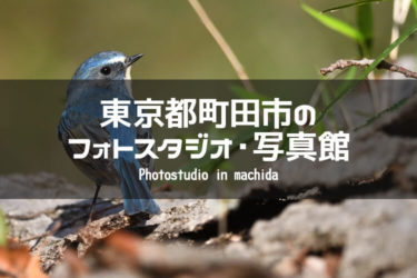 町田・玉川学園前・成瀬周辺でおすすめのフォトスタジオ・写真館5選|東京都町田市