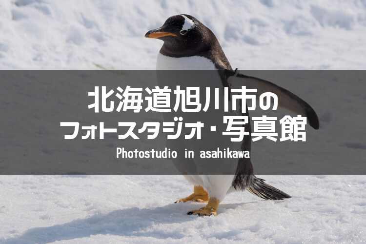 北海道旭川市 イメージ