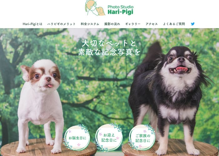 Photo Studio Hari-Pigi(フォトスタジオ ハリピギ)のキャプチャ画像