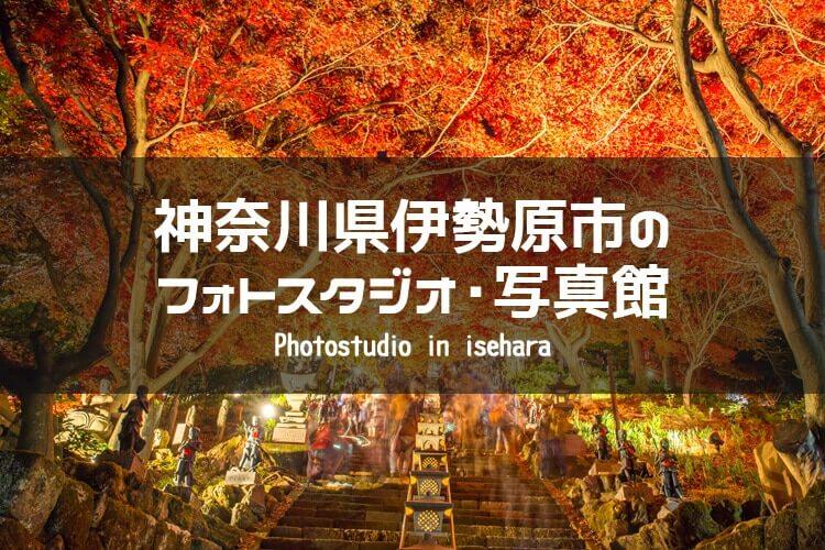 神奈川県伊勢原市 イメージ